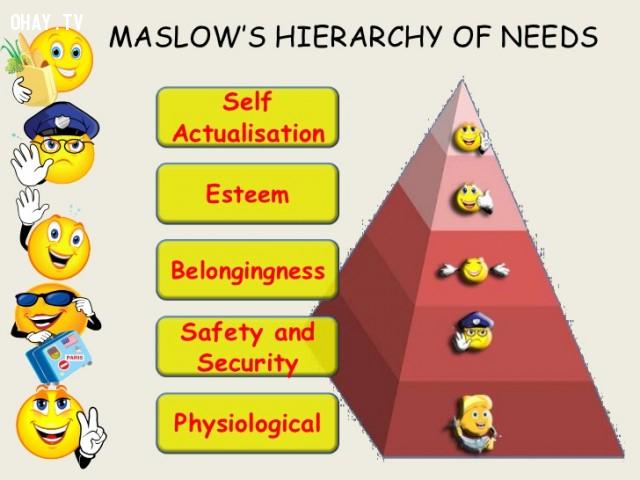 Tháp nhu cầu của Maslow,nhảy việc,kỹ năng,tháp nhu cầu Maslow,khi nào nên nghỉ việc