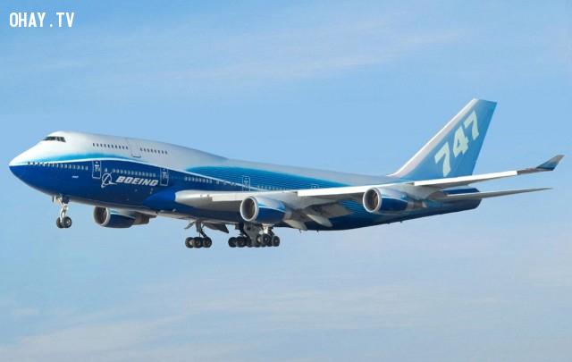 4. Boeing 747,giải mã logo,câu chuyện thương hiệu,những điều thú vị trong cuộc sống