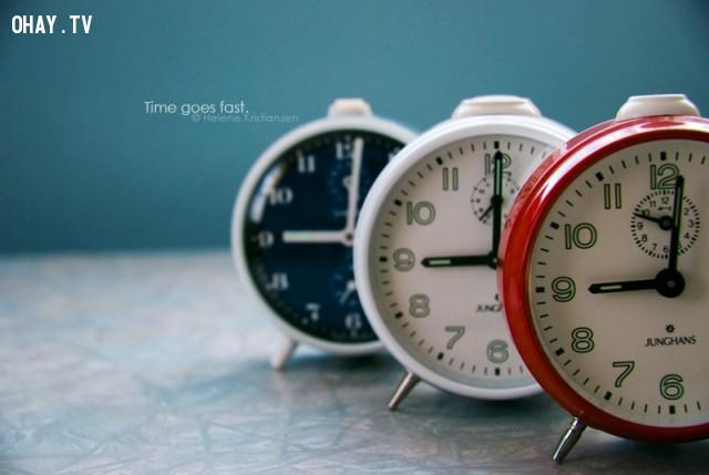 ,khám phá,thời gian,đồng hồ sinh học