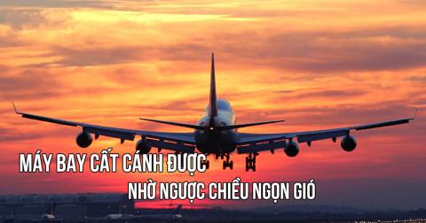 Những câu trích dẫn hay về cuộc sống (Việt - Anh) - Phần 2