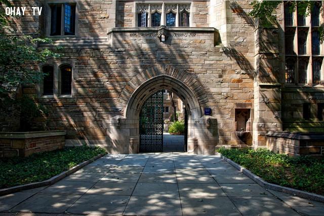 3. Các trường đại học nghiên cứu hàng đầu thế giới,khởi nghiệp,hoa kỳ,cường quốc của thế giới,kinh tế