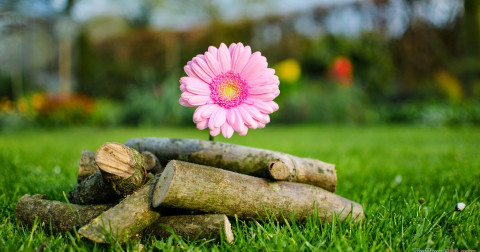 7 cách để biến cuộc sống tẻ nhạt trở nên đúng vị bạn cần!