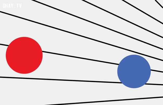 8. Hình tròn nào lớn hơn?,trắc nghiệm thị giác,thử tài tinh mắt