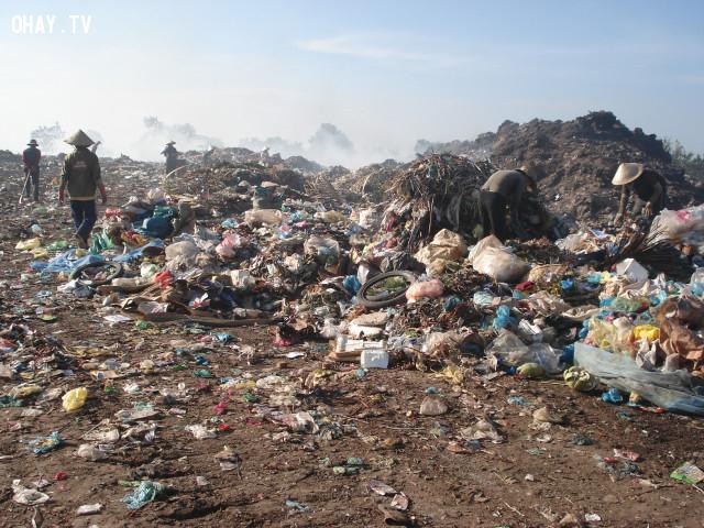 ,khoa học,trái đất,ô nhiễm môi trường
