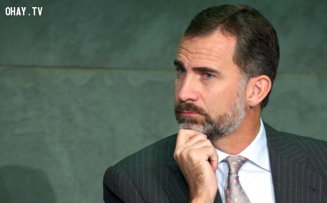 5. Đức vua Felipe đệ lục của Tây Ban Nha ,thủ tướng đẹp trai,tổng thống đẹp trai,trai đẹp