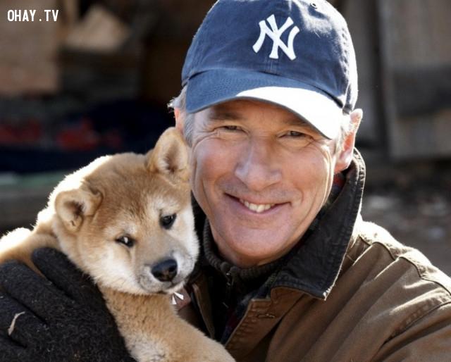 1. Hachi: A Dog's Tale (tựa Việt: Câu chuyện về chú chó Hachiko),phim hay,phim cảm động