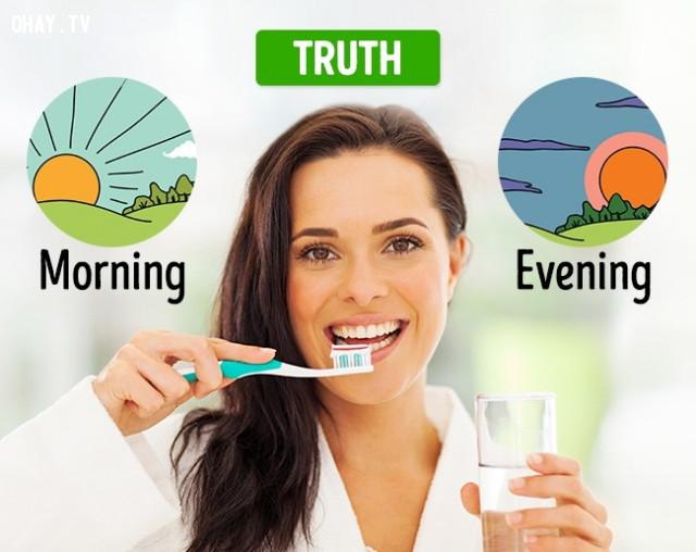 Đánh răng nhiều răng sẽ khỏe mạnh hơn,vệ sinh răng miệng,đánh răng,phòng sâu răng,đau răng,mọc răng khôn
