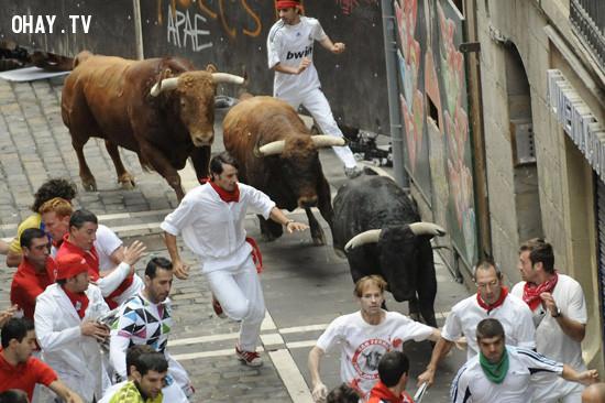 5. Chạy đua bò tót ở Tây Ban Nha,trò chơi cảm giác mạnh