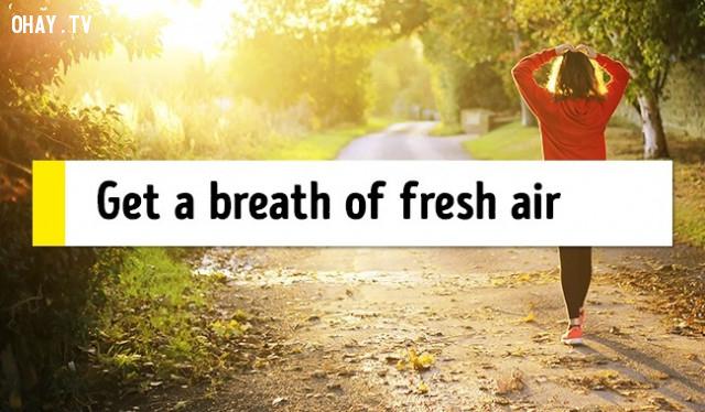 3. Hít thở không khí trong lành,mẹo sức khỏe,chữa mất ngủ,trị mất ngủ