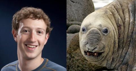 10 người nổi tiếng giống các loài vật