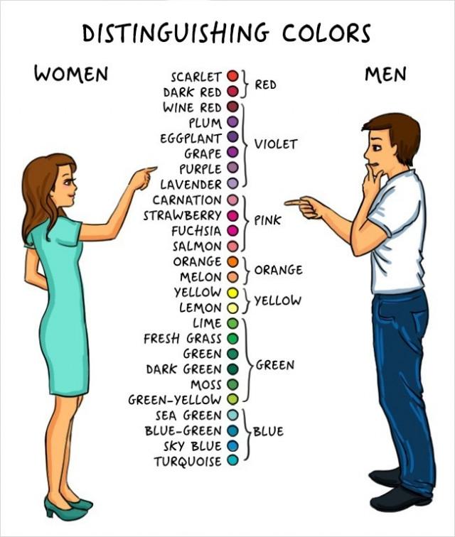 8. Khả năng nhận biết màu sắc.,cơ thể nam giới,đàn ông,cơ thể con người