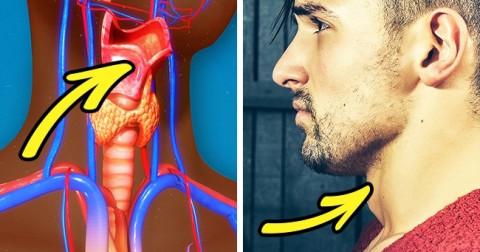 8 sự thật về cơ thể nam giới không phải ai cũng biết, kể cả chính họ.