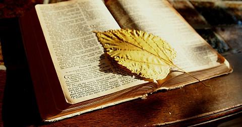 20 bài học sâu sắc về đối nhân xử thế mà Kinh thánh dạy bạn