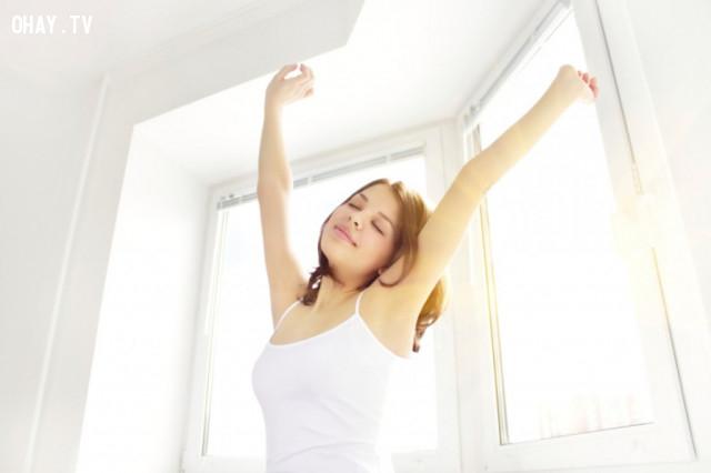 5. Đó hơn hết là bí quyết thành công,dậy sớm,thói quen tốt,thói quen của người thành công