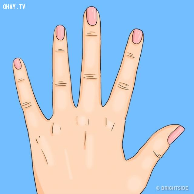 Không thấy lunulae,liềm móng tay,Lunulae