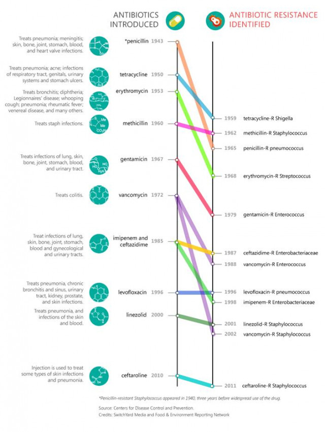 Lịch sử phát triển và đề kháng kháng sinh,
