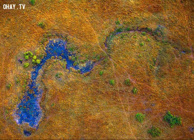 Sự kết hợp tuyệt đẹp giữa đất và nước ở Masai Mara, Kenya. Ảnh: National Geographic.,ảnh đẹp,ảnh thiên nhiên