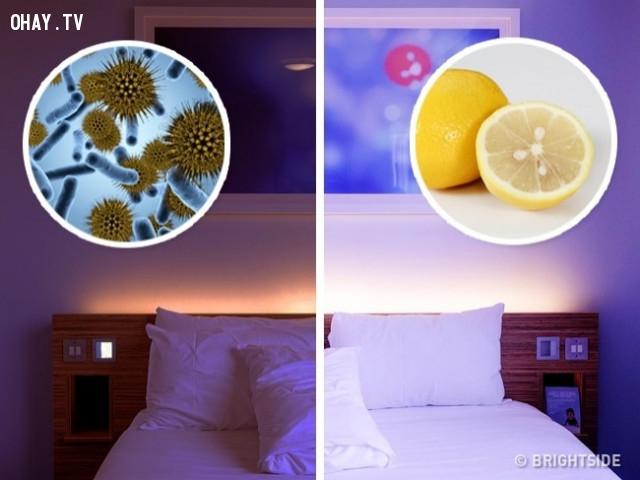 4. Làm sạch không khí,cải thiện giấc ngủ,quả chanh,trị mất ngủ,cách để ngủ ngon