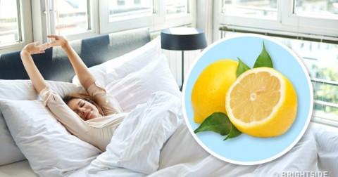 Điều gì sẽ xảy ra nếu bạn đặt một miếng chanh cạnh giường ngủ?