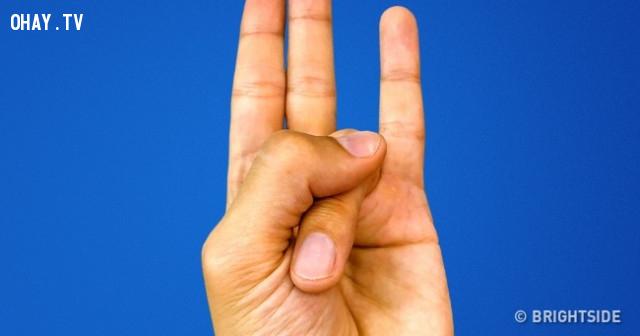 8. Surya Mudra,ngón tay,nắm tay,chữa bệnh bằng nắm tay