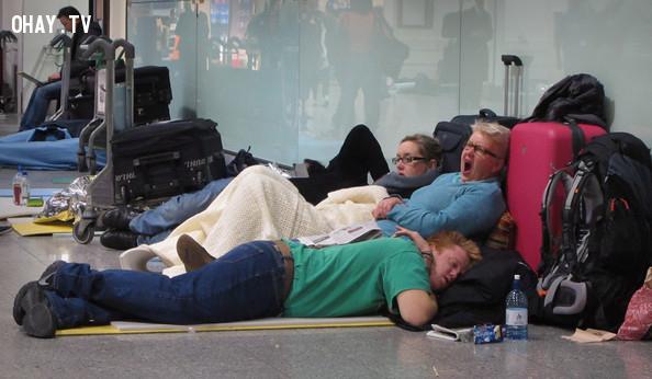Bạn có thể không được biết lý do thực sự tại sao chuyến bay của bạn bị hoãn hoặc hủy.,ngành hàng không,tiếp viên hàng không,đi máy bay