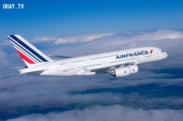 Hầu hết mọi thứ trên máy bay đều được làm sạch ít hơn bạn nghĩ,ngành hàng không,tiếp viên hàng không,đi máy bay