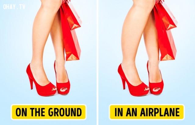 1. Chân bạn có thể bị phù,đi máy bay,cơ thể con người