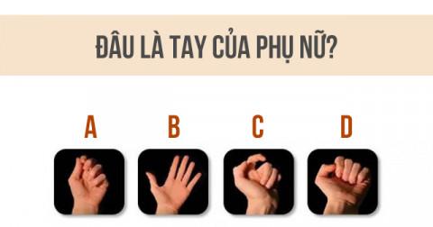 Trắc nghiệm tâm lý: Theo bạn đâu mới là bàn tay của phái nữ?