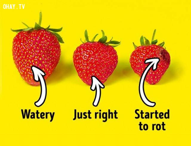 3. Hình dáng và kích thước ,dâu tây,cách chọn trái cây,mẹo lựa hoa quả