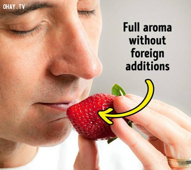 1. Mùi,dâu tây,cách chọn trái cây,mẹo lựa hoa quả