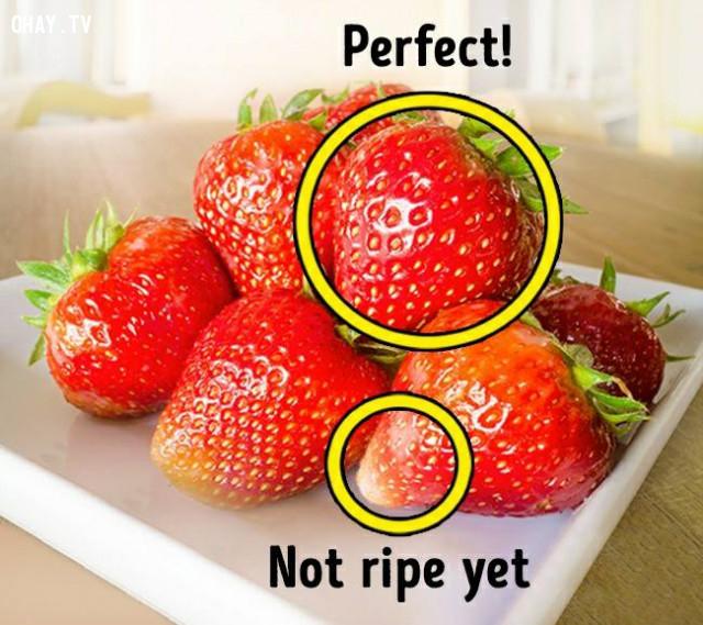2. Màu sắc,dâu tây,cách chọn trái cây,mẹo lựa hoa quả