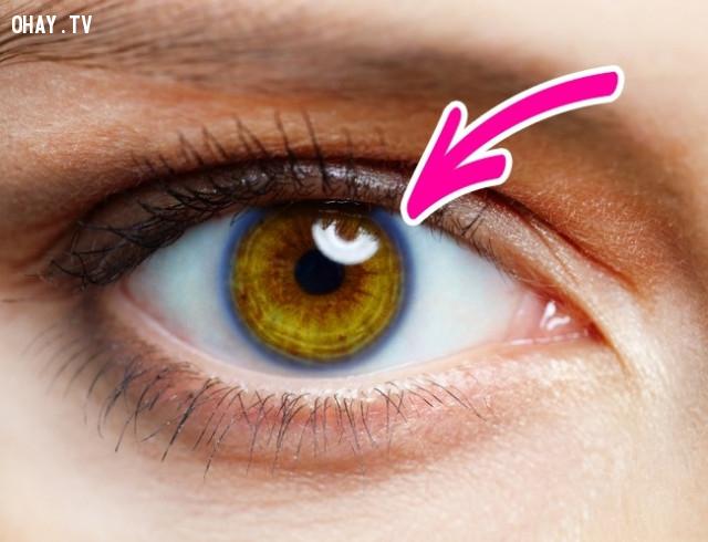 7. Xuất hiện những vòng tròn xung quanh tròng đen ,dấu hiệu sức khỏe