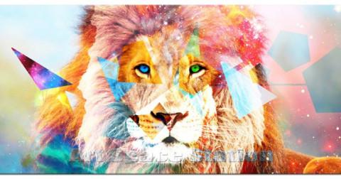 Câu chuyện về sư tử, con chó điên và bài học về sự tranh luận