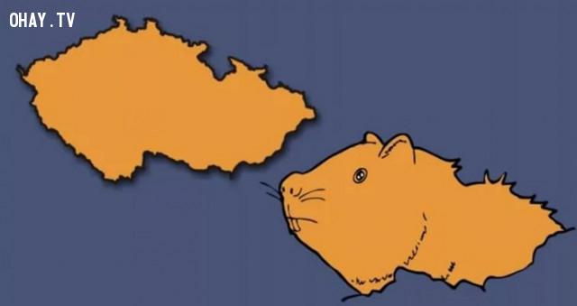 10. Cộng hòa Séc - Một chú chuột lang ẩn sau mỏm đá,bản đồ,châu âu,bí quyết ghi nhớ