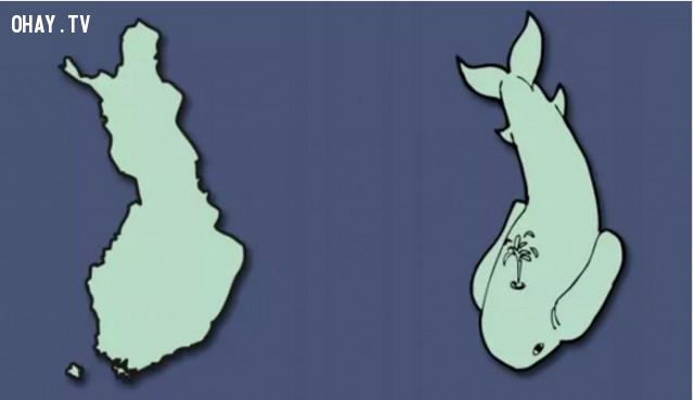 13. Phần Lan - Một chú cá voi,bản đồ,châu âu,bí quyết ghi nhớ