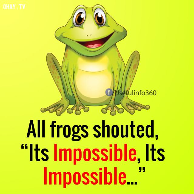 """Mọi con ếch khác đều hét lên: """"Không thể nào"""", """"Đó là điều không thể""""...,suy nghĩ tiêu cực,suy nghĩ tích cực,cách sống tốt"""