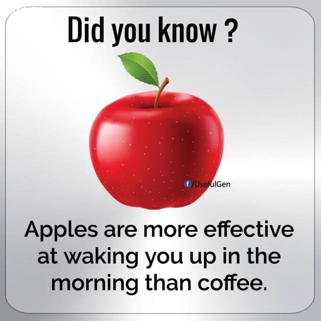 3. Ăn táo giúp bạn tỉnh táo khi thức dậy vào buổi sáng, nó còn hiệu quả hơn cả cà phê.,những điều thú vị trong cuộc sống
