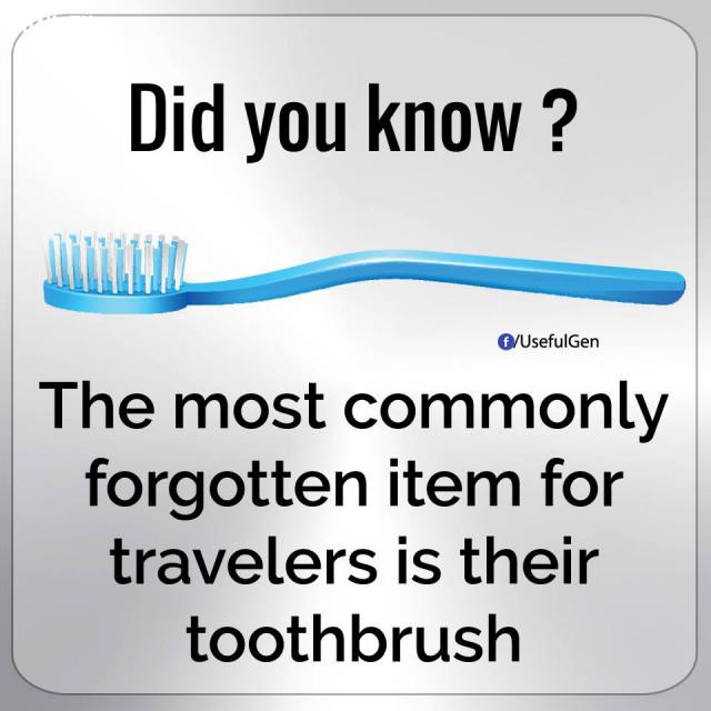 7. Món đồ mà du khách thường quên nhất là bản chải đánh răng.,những điều thú vị trong cuộc sống