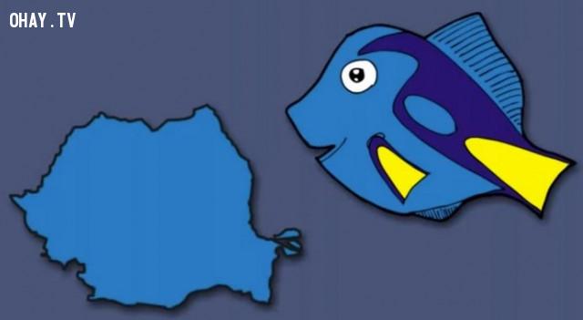 36. Romania - Cô cá xanh trong phim hoạt hình đi tìm Nemo,bản đồ,châu âu,bí quyết ghi nhớ