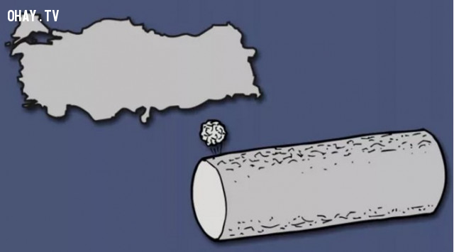 46. Thổ Nhỉ Kỳ - Tàu thăm dò vũ trụ,bản đồ,châu âu,bí quyết ghi nhớ