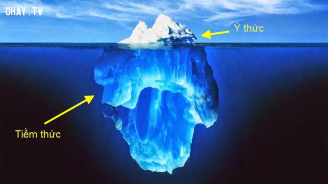 Bộ não con người có 2 phần là tiềm thức & ý thức:,hạnh phúc,thành công