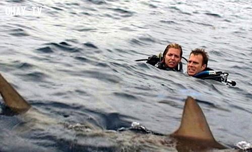 Blanchard Ryan trong Open Water (2003),