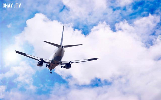 5. Sử dụng phương tiện này thường xuyên hơn,kinh nghiệm đi máy bay,lưu ý khi đi máy bay,cách đi máy bay