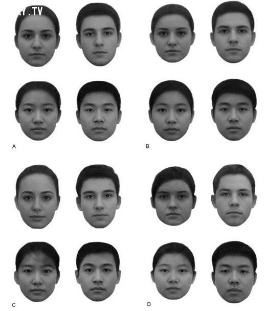 Khuôn mặt bạn giống nhóm khuôn mặt nào nhất ?