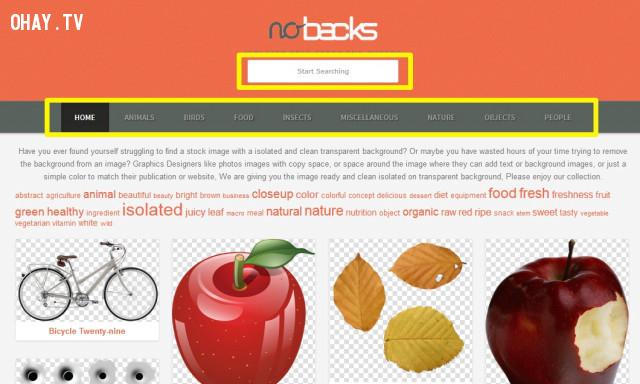 """Giao diện trang chủ của Nobacks chỉ gồm khung tìm kiếm """"Start Searching"""" và thanh menu các chủ đề hình ảnh để tìm kiếm ảnh nhanh chóng và dễ dàng.,website hay"""