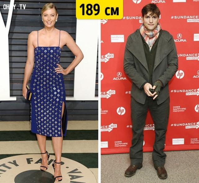 Maria Sharapova và Ashton Kutcher,