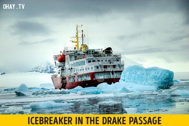 Drake Passage,vẻ đẹp chết người,vùng nguy hiểm