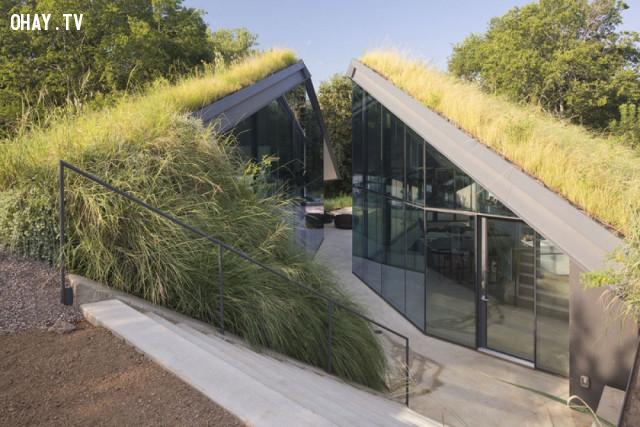 1. Nhà độc mộc ở Texas, Mỹ,kiến trúc độc đáo,nhà đẹp,nhà thiết kế độc đáo