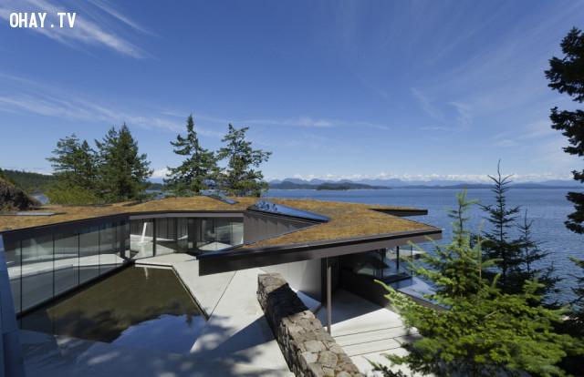 2. Ngôi nhà dưới rừng thông ở Anh, Columbia, Canada,kiến trúc độc đáo,nhà đẹp,nhà thiết kế độc đáo