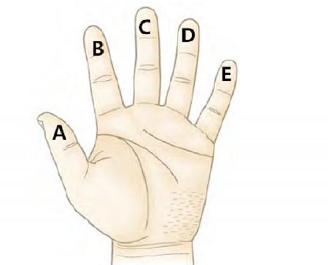 Hãy đưa bàn tay trái lên và xem trong năm ngón tay, bạn thấy hài lòng và thích ngón tay nào nhất?